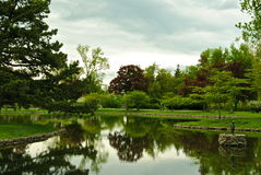 Lac mirror, pelouse de forêt Images libres de droits