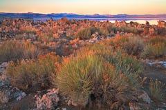 Lac mono la Californie photo stock