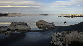 Lac mono, la Californie, Etats-Unis Photographie stock