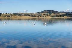 Lac Moogerah au Queensland au cours de la journée photos stock