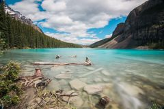 Lac moraine, stationnement national de Banff, Canada Photos stock