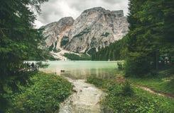 Lac mountain à Valle di Braies entouré par des forêts Photos libres de droits