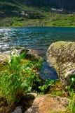 Lac mountain Images libres de droits