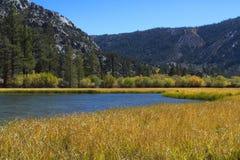 Lac mountain avec des roseaux Photos libres de droits