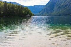 Lac mountain en été - lac Bohinj Image libre de droits