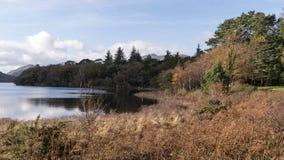 Lac mountain entouré par la forêt d'automne photo stock