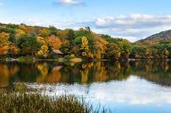 Lac Mountian avec le rivage boisé sous le ciel bleu en automne Images libres de droits