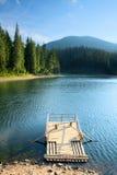 Lac mystérieux Sinevir parmi des sapins. Images libres de droits