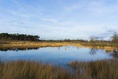Lac néerlandais image stock
