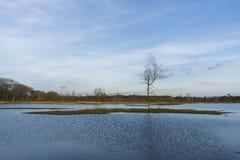 Lac néerlandais image libre de droits
