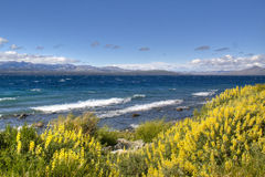 Lac Nahuel Huapi dans Bariloche, Argentine images libres de droits