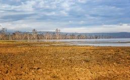 Lac Nakuru National Park, Kenya soda photographie stock