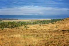 Lac Nakuru National Park, Kenya soda image stock