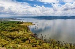 Lac Nakuru National Park, Kenya soda photo stock
