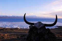 Lac Namtso au Thibet Photographie stock libre de droits