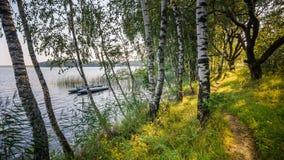 Lac Naroch belarus Vue de la côte par le bouleau côtier images stock