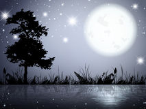 Lac night de lune Photos stock