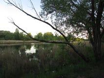 Lac noir Photo stock