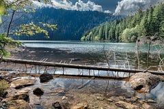 Lac noir glaciaire entouré par la forêt Photos stock