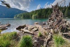 Lac noir glaciaire entouré par la forêt Photo stock