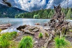 Lac noir glaciaire entouré par la forêt Photographie stock