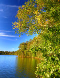Lac Northwoods le Wisconsin Sweeney images stock