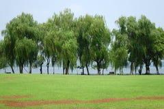 Lac occidental images libres de droits