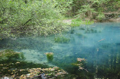 Lac Ochiul Beiului, parc national de BeuÅŸniÅ£a d'†de Cheile Nerei «, Roumanie Image libre de droits