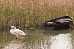 Lac Ohrid Image libre de droits