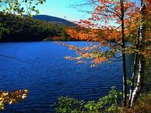 Lac ondulé dans l'automne Image stock