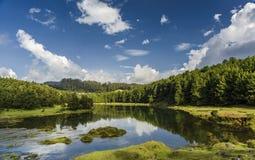 Lac ou rivière Pykara dans Ooty Images stock