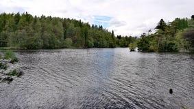 Lac paisible Image libre de droits