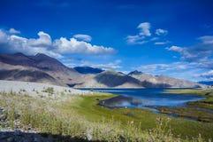 Lac Pangon, Leh. Image stock