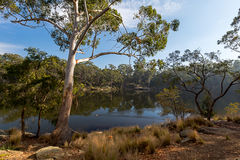 Lac Parramatta Images libres de droits