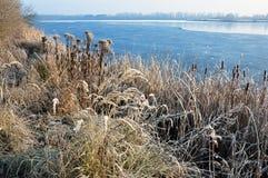 Lac partiellement congelé avec les herbes sèches sur le rivage Photographie stock libre de droits
