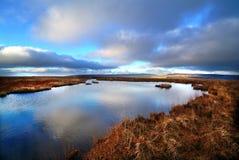 Lac peat Image libre de droits
