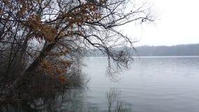 Lac pendant l'automne en retard banque de vidéos