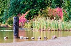 Lac perdu Photos libres de droits