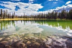 Lac peu profond entouré par la forêt de pin Images libres de droits
