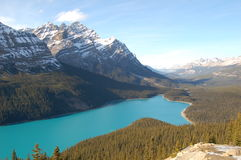 Lac Peyto Images stock
