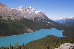 Lac Peyto Photographie stock
