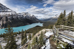 Lac Peyto Photo stock