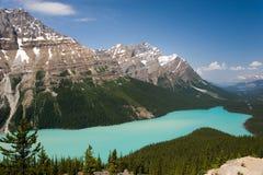 Lac Peyto, Alberta, Canada Images libres de droits