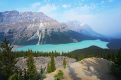 Lac Peyto dans les Rocheuses canadiennes Images libres de droits