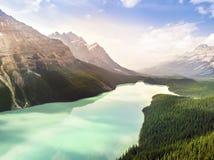 Lac Peyto de turquoise en parc national de Banff, Alberta, Canada Image libre de droits