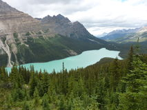 Lac Peyto en parc national de Banff, Alberta, Canada Photos stock