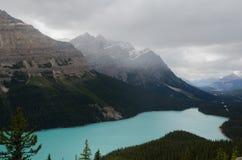 Lac Peyto - Waterton images stock