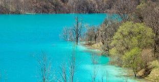 Lac pollué Photographie stock