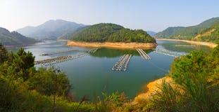 Lac pour l'aquatics de race images libres de droits