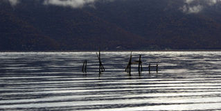 Lac Prespa Images libres de droits